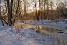 Зимнее утро на реке Сула / ***