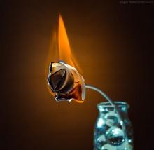 Без названия / огонь