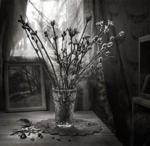 Весна в старом доме... / ...
