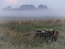 Туман, туман... / Кенозеро