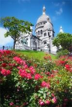 У подножья базилики Сакре Кёр / Солнечное утро в Париже.
