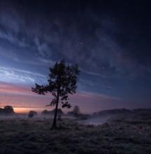 Осенняя ночь / 2 вертикальных кадра