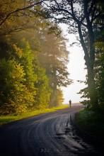BelaRUN ;) / 7.47 утра, туман, маршрут к рассветному солнцу)