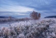 Осенняя картинка / Ноябрьское утро