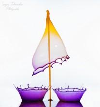 Всплеск - Танцы на пелоне / Высокоскоростная съемка капель http://prophotosite.com/  Для создания этого образа было использовано 4 клапана. Графические редакторы для склейки не применялись. Цвет - натуральные красители.