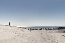 [seaside dream] / ...снилось море