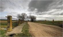 Полевая осенняя (3) / Продолжаю небольшую серию фото с полевого выезда........