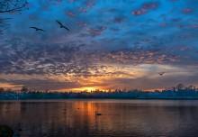 Закат на озере Гентофте / ***