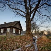 Вёска... / Деревня... тоска...пустые дома... опавшие, как осенние листья постройки...голодные, почти одичавшие домашние животные
