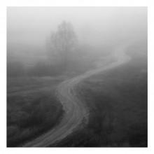 / дорога, туман, утро