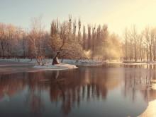 декабрь / у пруда