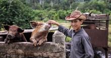 Маленький фермер / Куба.