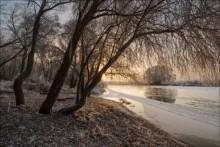 Без названия / Утро река Друть иней