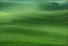 / 50 оттенков зеленого / / Чехия, Южная Моравия. Весна 2014  2 [img]http://35photo.ru/photos_series/658/658512.jpg[/img]  3 [img]http://35photo.ru/photos_series/658/658513.jpg[/img]