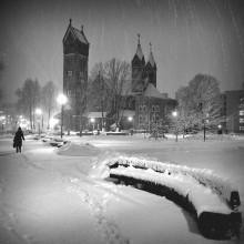 _just_snow_ / ***