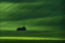 / Водный мир / / Южная Чехия (Южная Моравия), весна 2014. http://fototour.by/south-moravia/