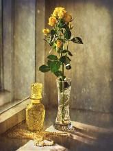 Этюд с желтой розой / Послевосьмимартовское
