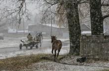 Сон из детства.. / Жеребенок пытается догнать телегу с лошадью, на перекрестке деревенских дорог, в первый снег..