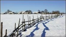 Март. Деревенская околица... / Март месяц, Вологодские деревни...