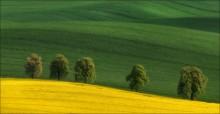 / Чехия, Южная Моравия. Весна 2014 г. Приглашаю в конце апреля и на майские праздники в эти же места. http://fototour.by/south-moravia/