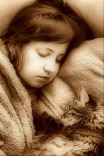 Спят усталые игрушки... / Крепкий плюшевый сон