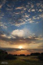 Утро близ Днепра / Гомельщина