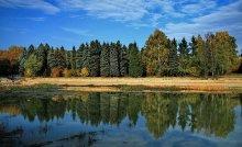 Осенний пруд (Ботанический сад) / Осень