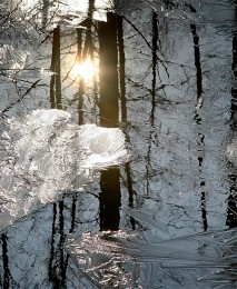 Весенняя акварель / Лесной ручей отражение на исходе дня