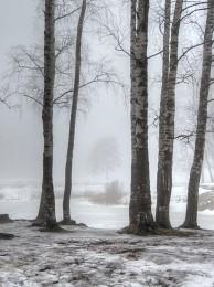 Туман / туман