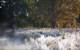 / осень на Вилии