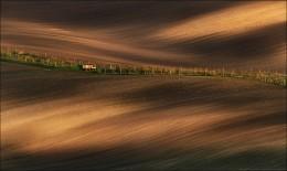 / Кубик Рубика / / Чехия, Южная Моравия, весна 2015 г. Места в этот раз выглядели совершенно по-иному, нежели чем в прошлом году. Ну и цветение деревьев в этом году мы все-таки застали. Рапс, кстати, будет дней через 10 и расти он будет совсем в других местах. Подтвердились слова о том, что его каждый год пересевают на новом месте. В планах посетить эти места в мае: http://fototour.by/south-moravia/