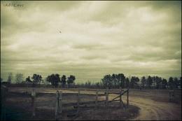 Деревенская зарисовка / Деревня Берёзовец, Псковская область, Новоржевский район