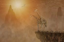 С вершины мира / Компьютерная обработка двух жирафов поднялся на высокую гору