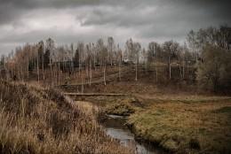 Осенний овражек / Поздняя осень в Средней полосе