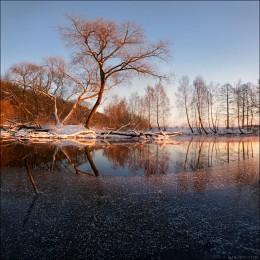 / ПЕРВОЛЕДЬЕ / / р.Свислочь, зима -2014