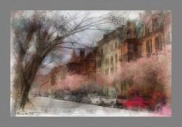 *Мой цветущий Бостон* / Фотоимпрессионизм