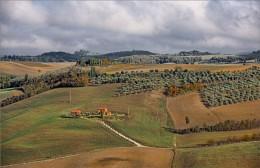 В сельской местности / ***