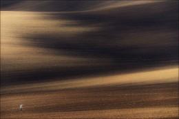 / Генерал песчаных карьеров / / Южная Чехия. Серая цапля. Май 2015.  Приглашаю в эти же и иные места с 28-го (можно с 27-го мая, с заездом в Мирский замок) по 3-е июня. Подробнее на http://fototour.by/south-moravia/