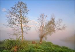 Утро на Лесной / Раннее утро на р. Лесная
