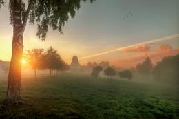 утро в Муринском парке... / Санкт-Петербург август 2015