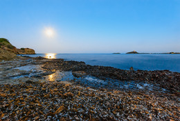 Янтарный берег / Сухие водоросли, лунная дорожка, море и одинокая сторожевая башня. Местечко Нора рядом с Пулой, Сардиния.