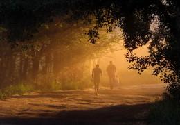 По дороге вечерком... / Туман рассеялся немного - из мглы явился силуэт: Навстречу мне, глядя под ноги, бредет знакомый человек
