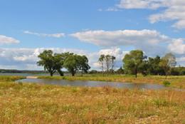 річка / останні теплі дні літа