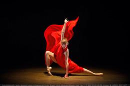 The beauty of ballet / Белые лебеди Театра балета ДК Добрынина Фото: Михаил Семенов