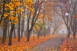 Университетская аллея / Осеннее настроение