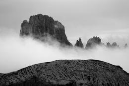 Антигравитация и суслики / Альпы