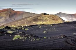 Где-то на Марсе. / На вулканических склонах.