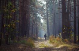 Осенний марафон / .....