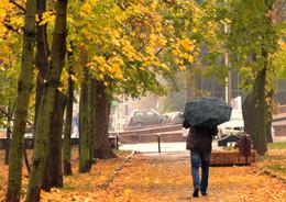 Осенний марафон / ***
