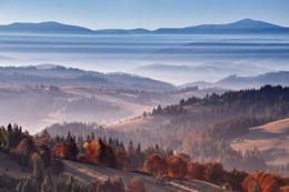 Зарисовка с полосатым туманом / ***